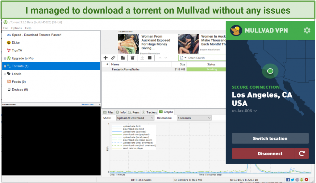 graphic showing torrenting activity using Mullvad VPN